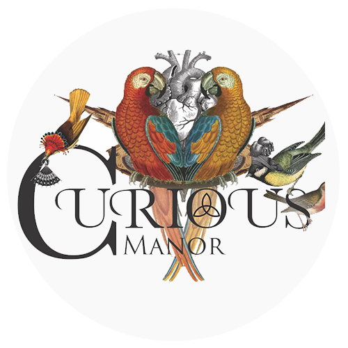 Curious Manor