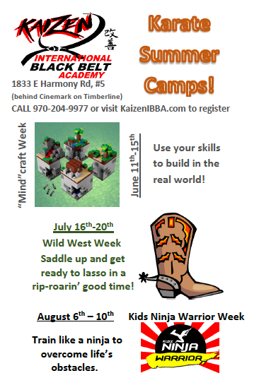 Karate Summer Camps 2018