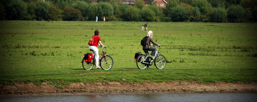 Cyclists in meadow, Photo: Andre Neves