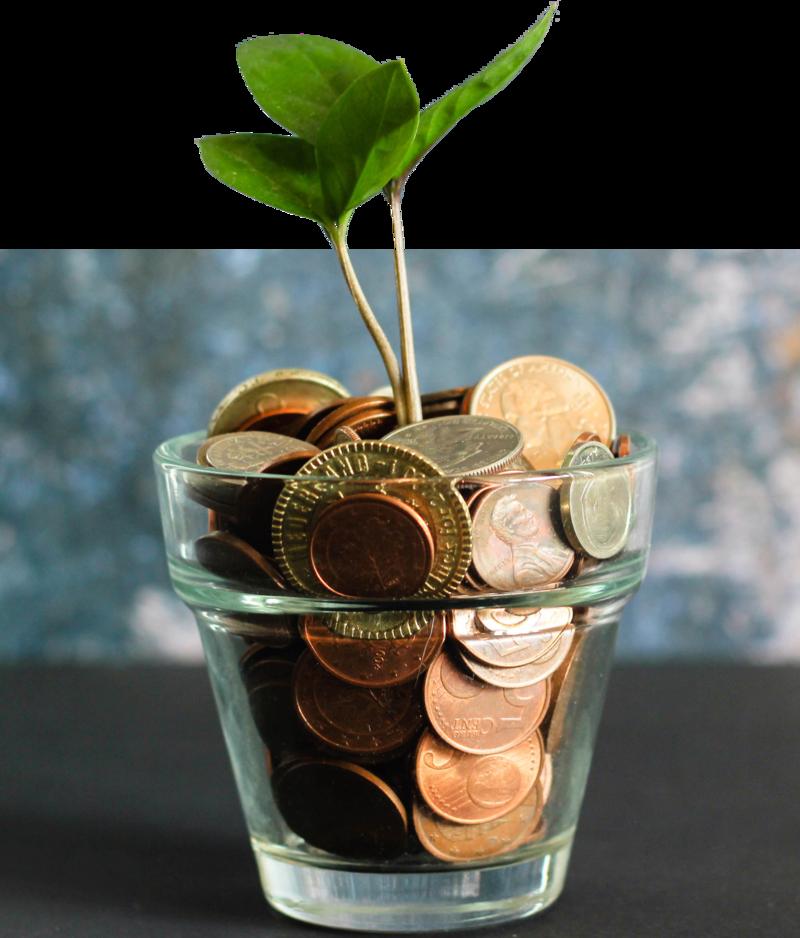 Laat je budget toenemen met budgetcoaching