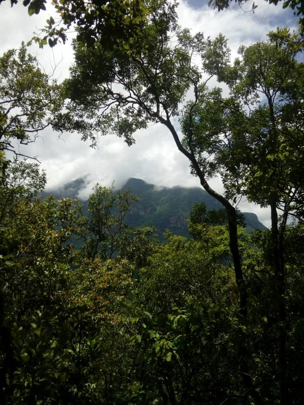 chiang dao national park mountains