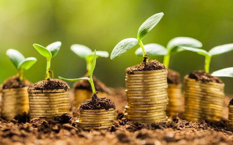 Como economizar para investir?