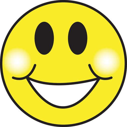 A felicidade não é um direito, mas sim uma conquista