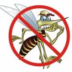 Jogo educativo contra a dengue.