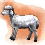 Gerente de banco: lobo em pele de cordeiro. Parte 2. A prova.