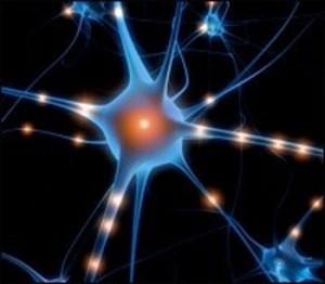 Novo método para diagnosticar o Alzheimer