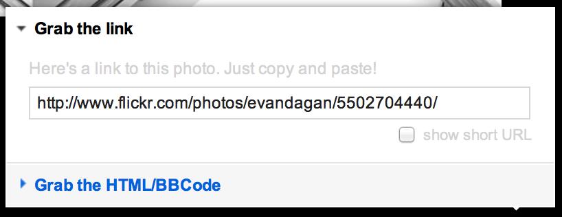Flickr's share URL box