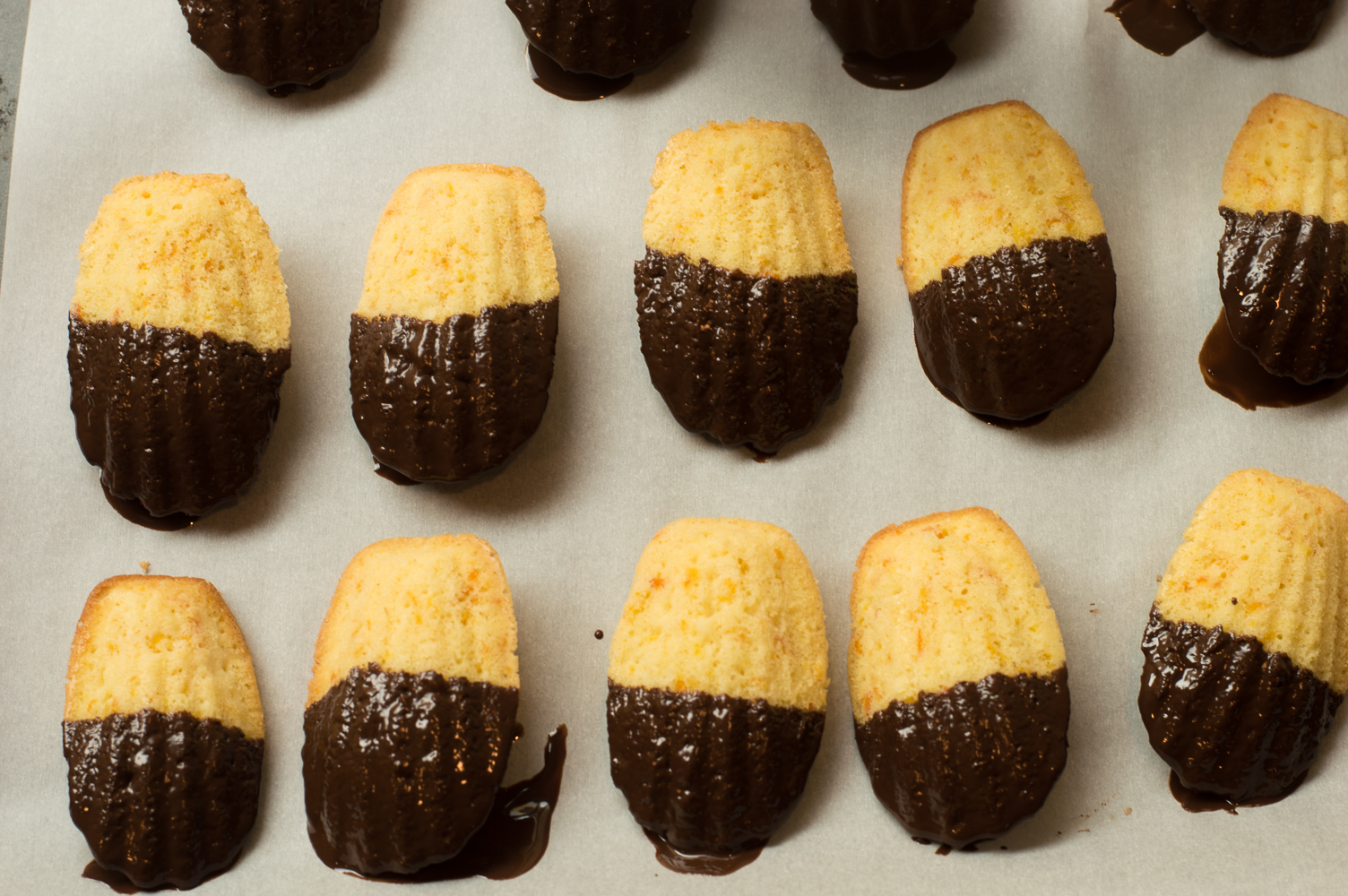 Chocolate Dipped Orange Madeleines