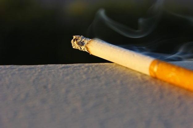 Le tabac naturel sans additifs est-il moins nocif ?