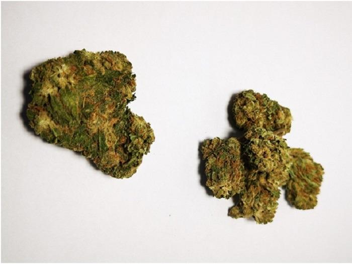 Fumer des fleurs ou résines de cannabis est-il dangereux