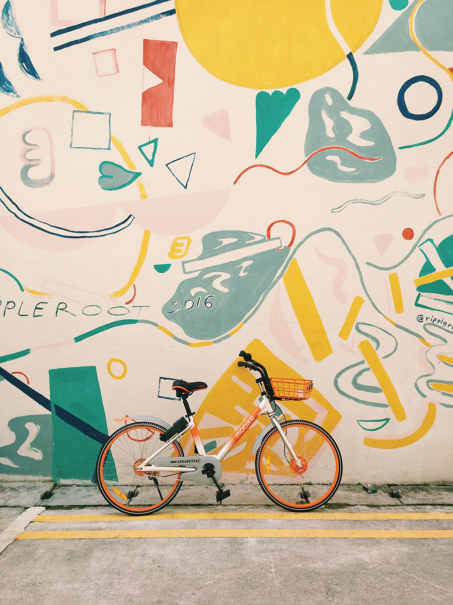Bicycle Wall