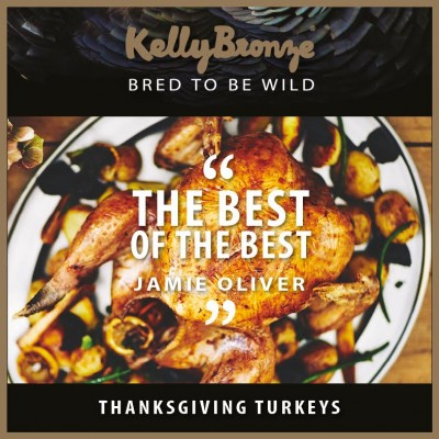 5 Reasons to Have A KellyBronze Thanksgiving image