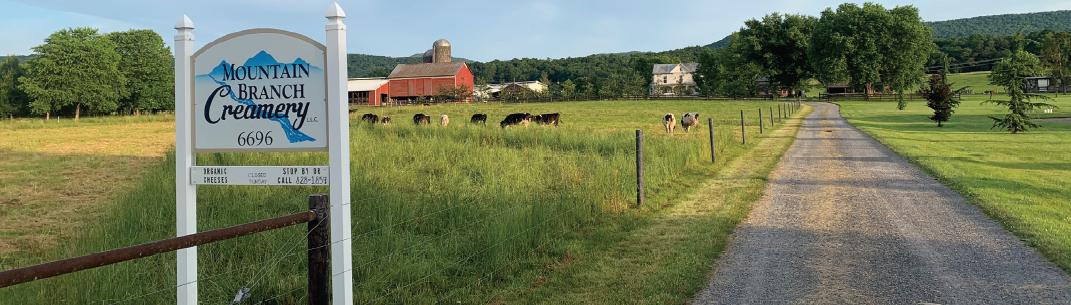 Shenandoah Valley Family Farms image