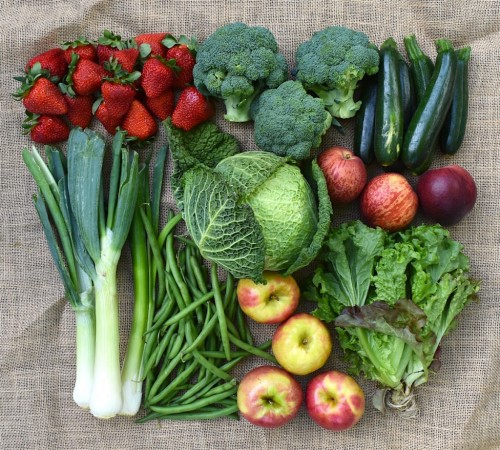 SPRING INTO ACTION WITH COMMUNITY-SUPPORTED AGRICULTURE image