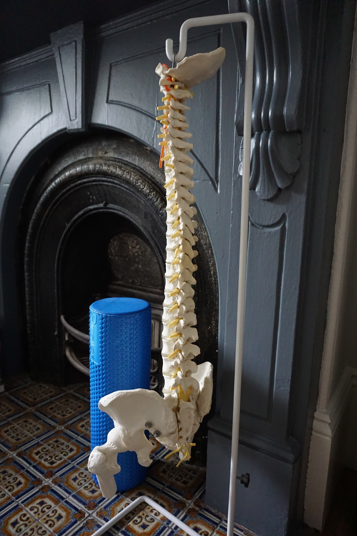 Stand Corrected Chiropractic Office Birchgrove