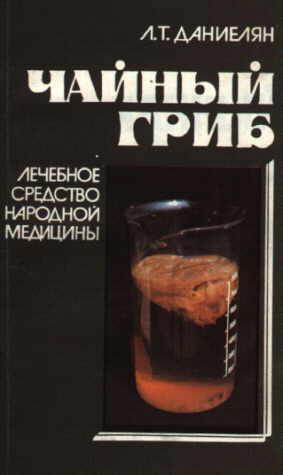 book Prof. Danielova