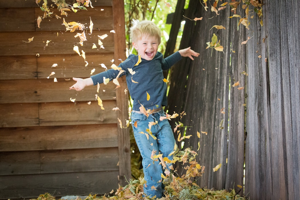 Featured image for our blog post 5 Autumn Activities For Under 5's