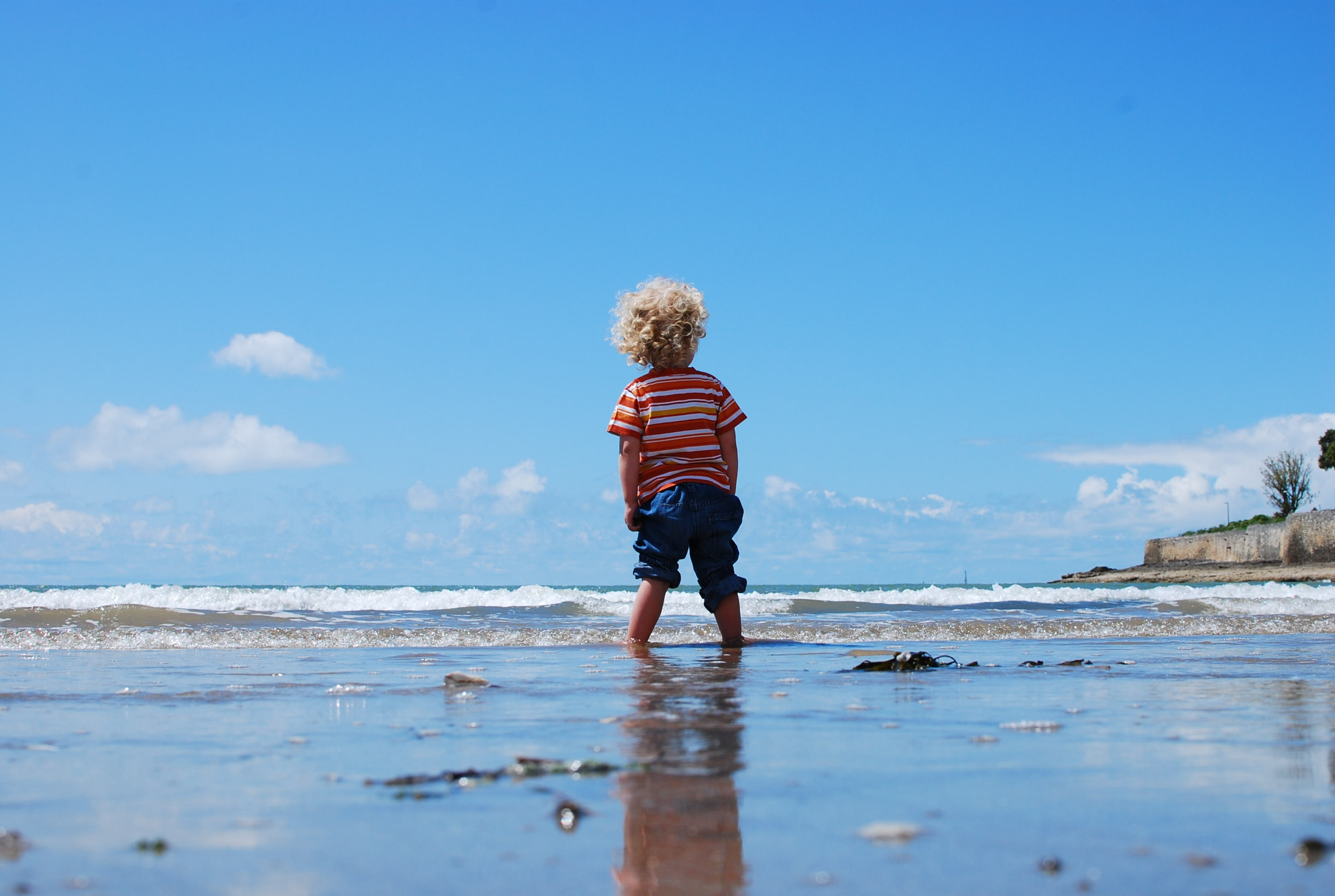Featured image for our blog post The Environmental Impact of ECE