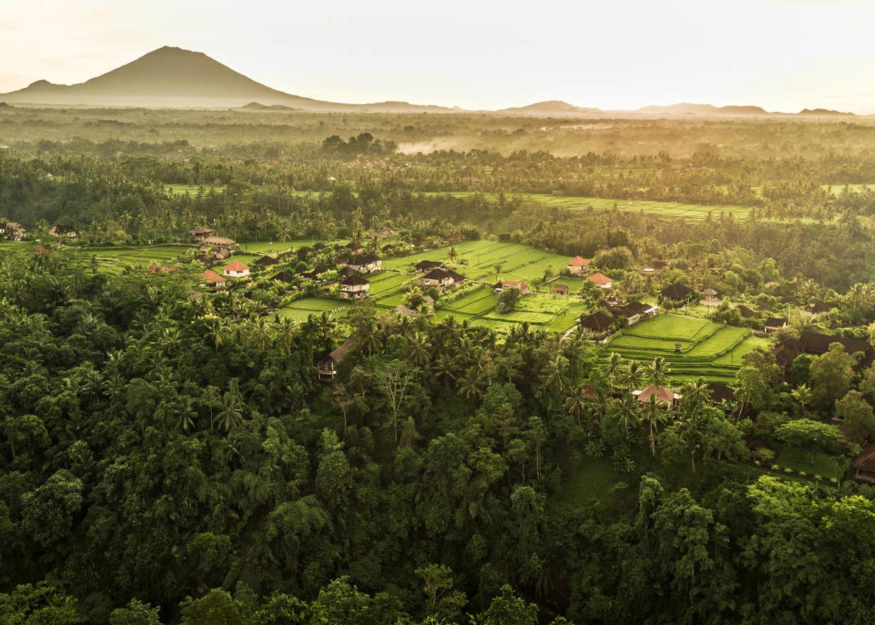 Aerial view of COMO Uma Ubud.