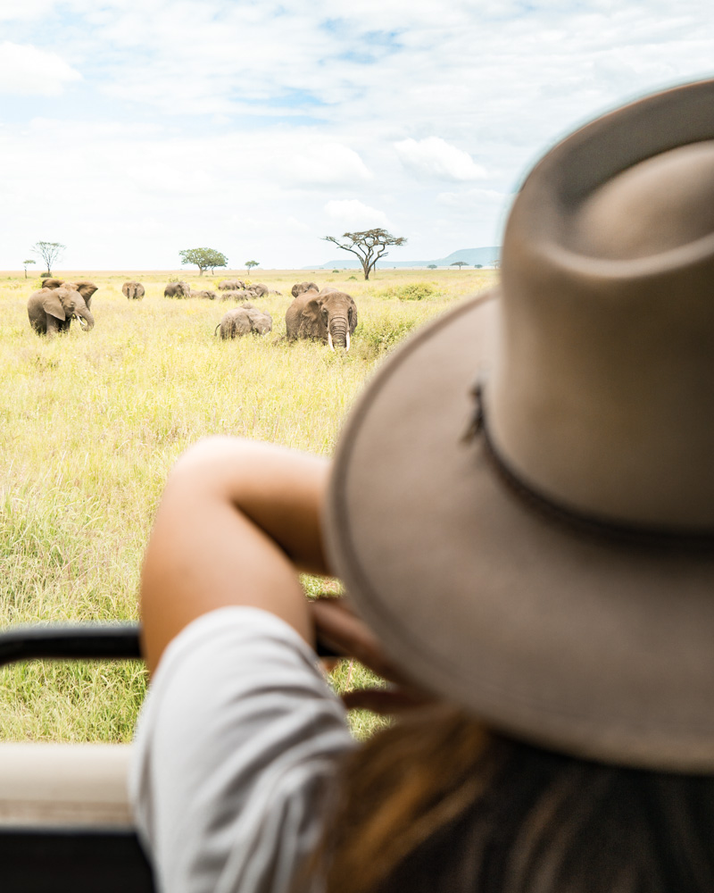 Beyond My Wildest Dreams - Two Weeks in Tanzania