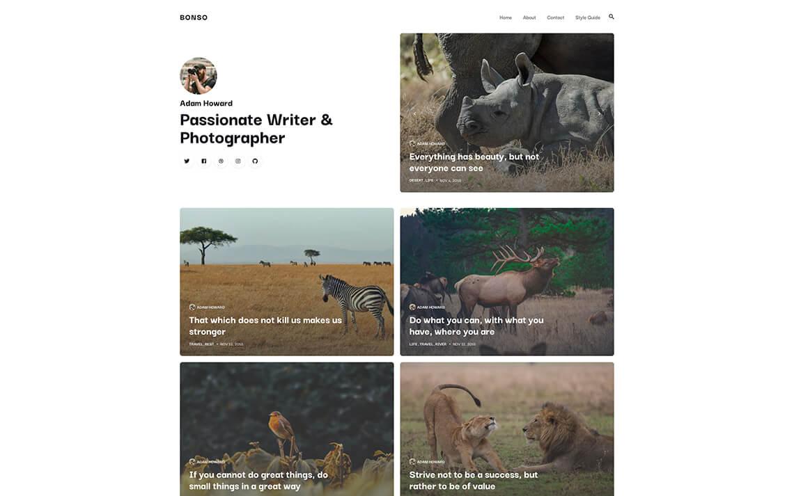 Bonso: a modern blog theme