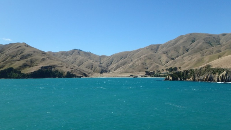 Reijo and Antti - South Island Tour by Harley Davidson