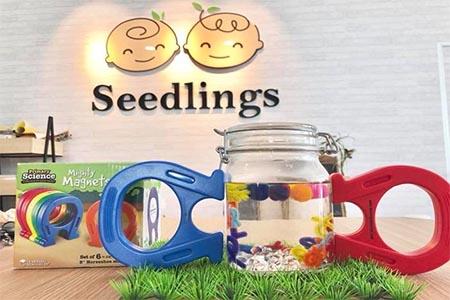 Seedlings store photo