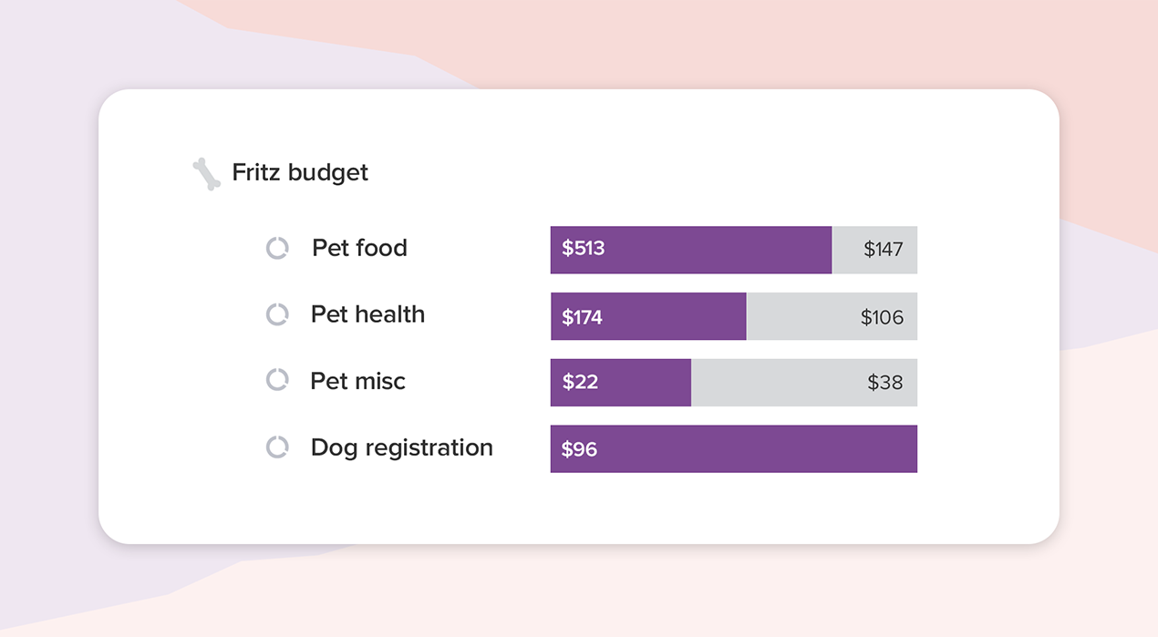 Graphs showing various in progress budgets for Fritz the dog