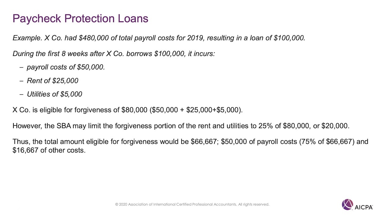 Paycheck Protection Loans p45