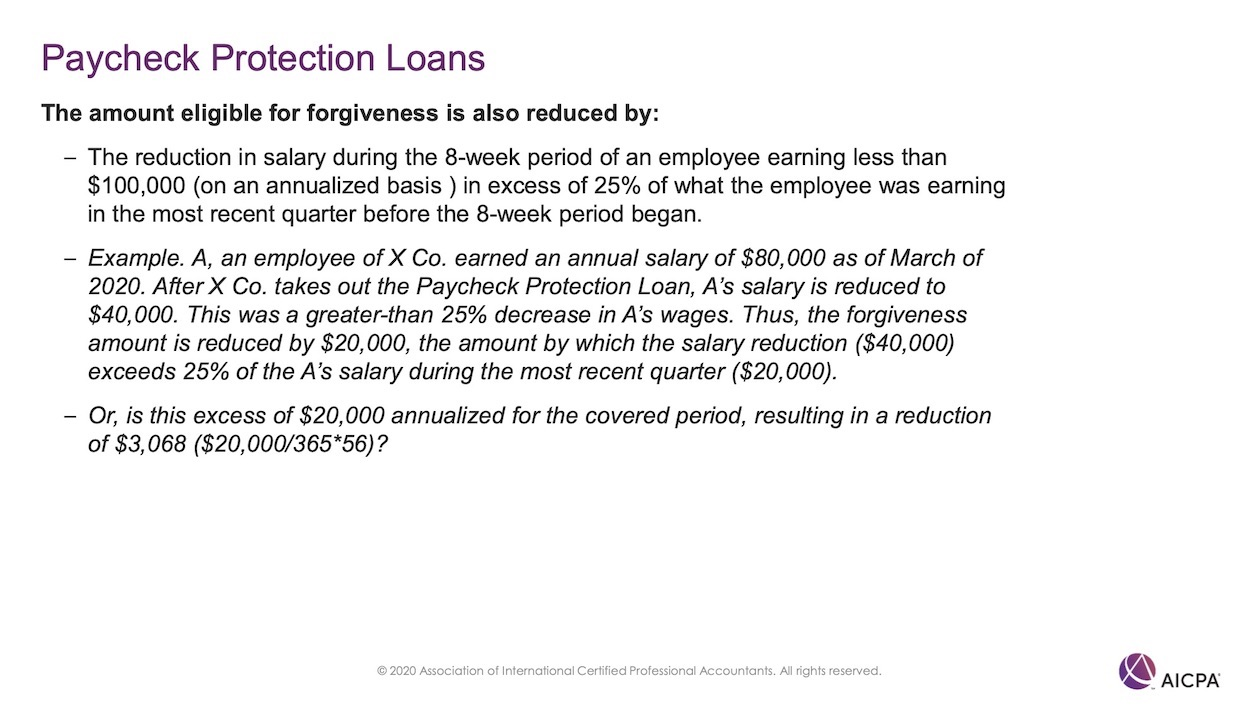 Paycheck Protection Loans p48