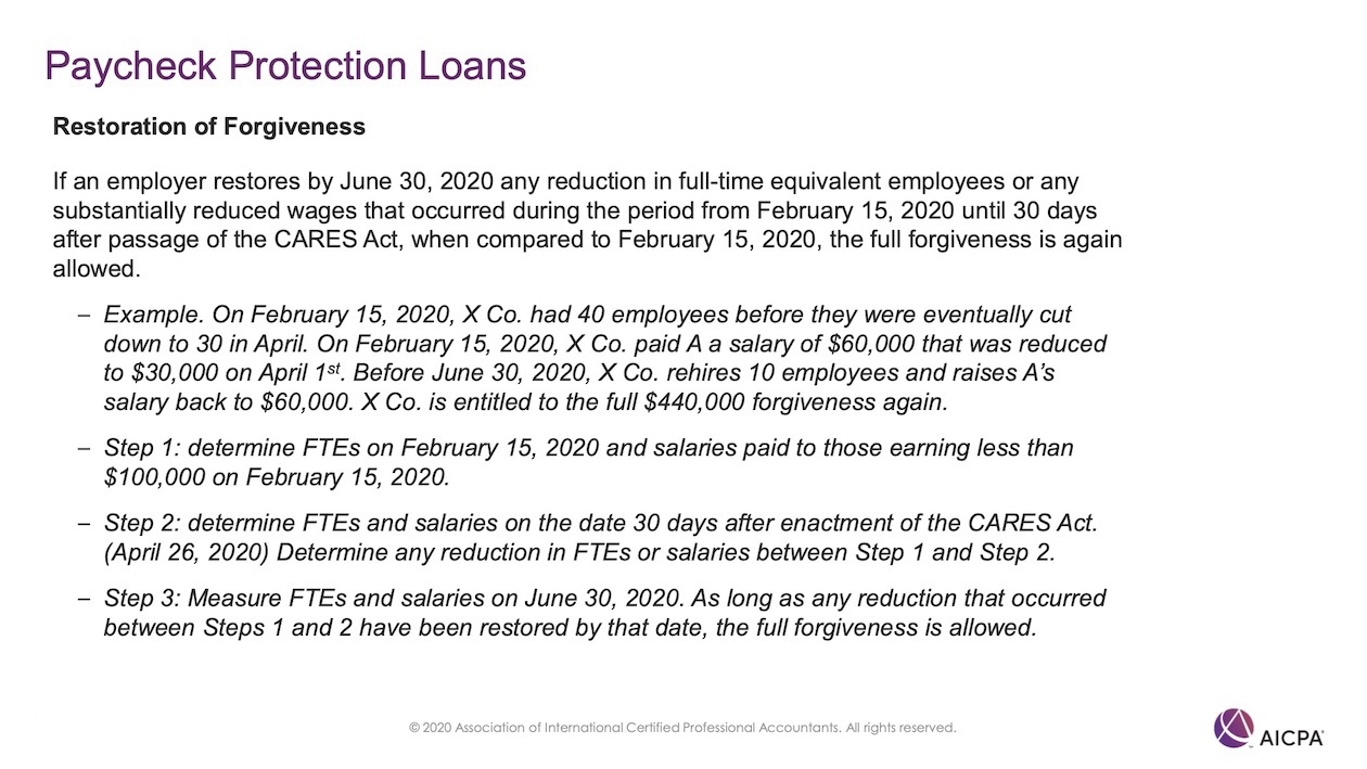 Paycheck Protection Loans p49