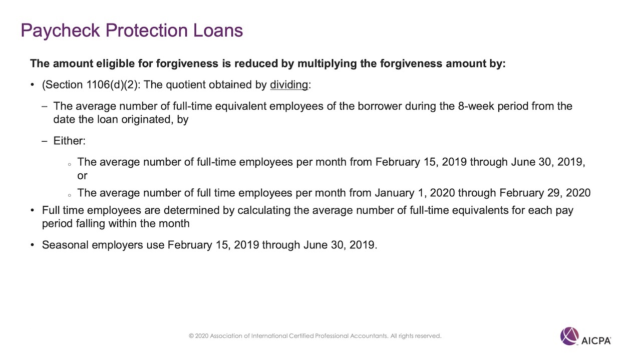 Paycheck Protection Loans p46