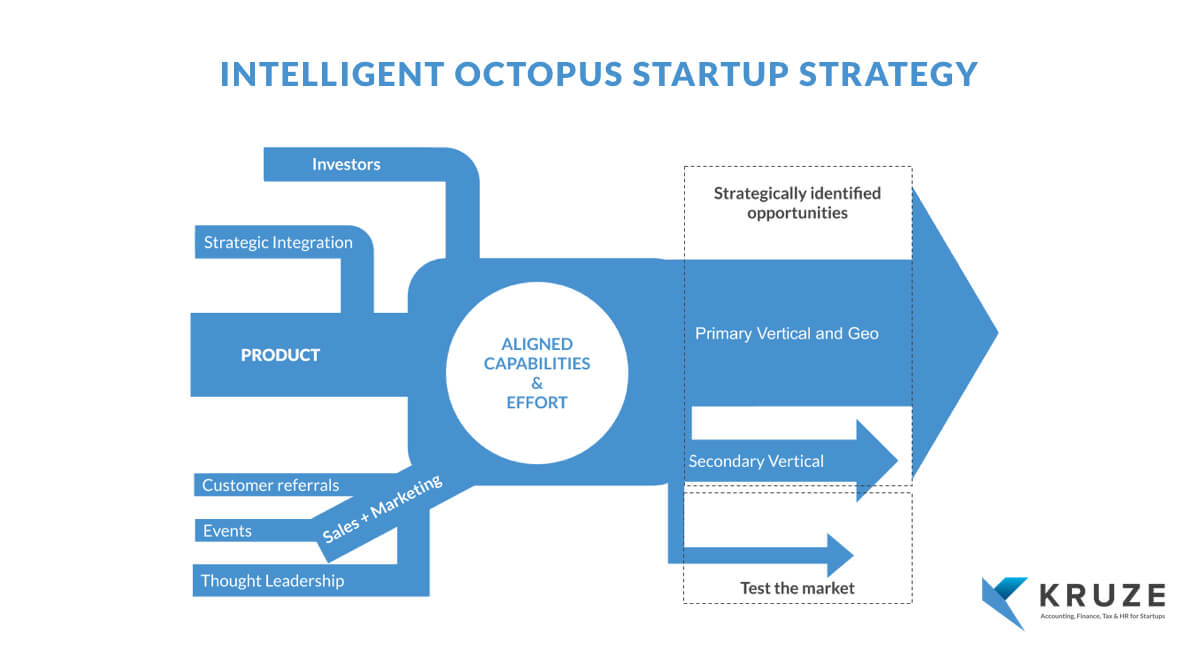 Intelligent Octopus Startup Strategy