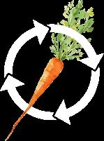 Illustration représentant une carotte dans un cercle vertueux