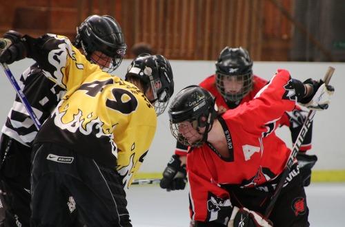 New to Inline Hockey?