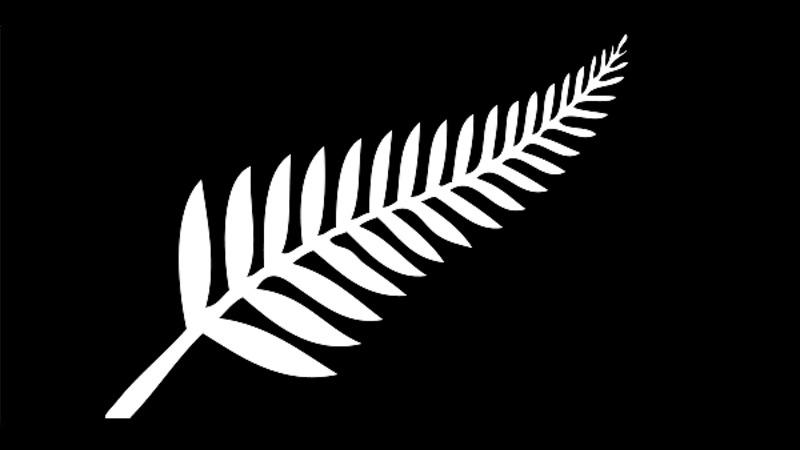 Local Inline Hockey Players Represent New Zealand