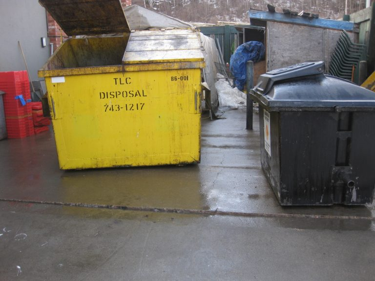 Pressure washed dumpsters