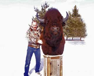 Huge Bison - Robert Coldwell