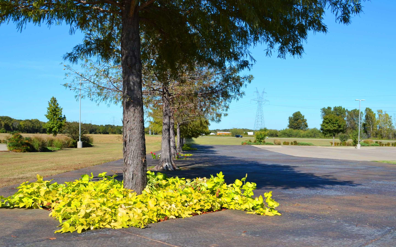 Photo of Walnut Ridge