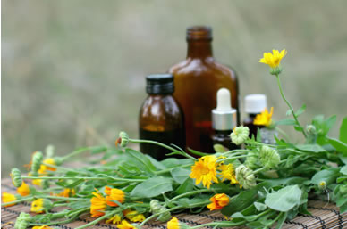 Photograph of Calendula and medicine bottles used in homeopathy