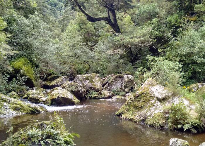 Waipori Falls