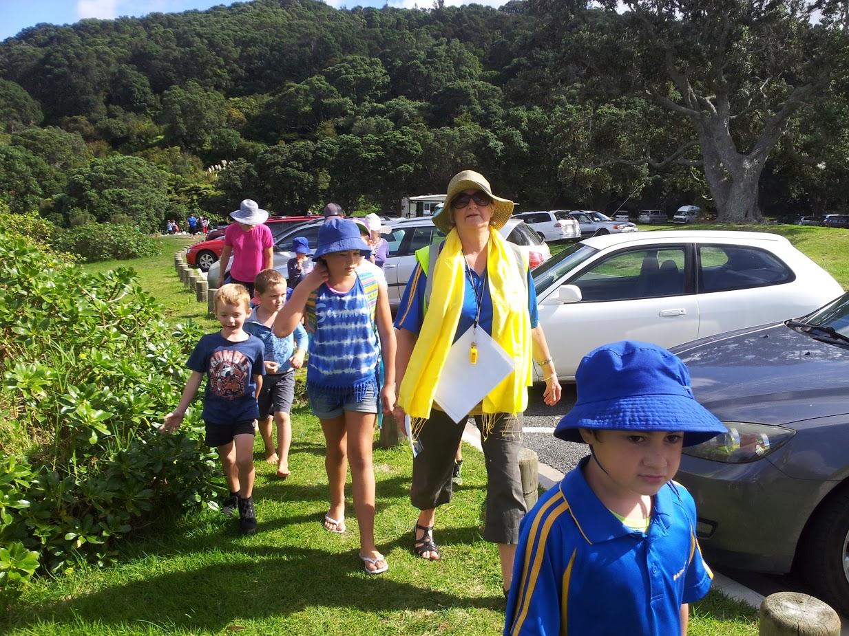 ANZAC Bay - Amazing Race