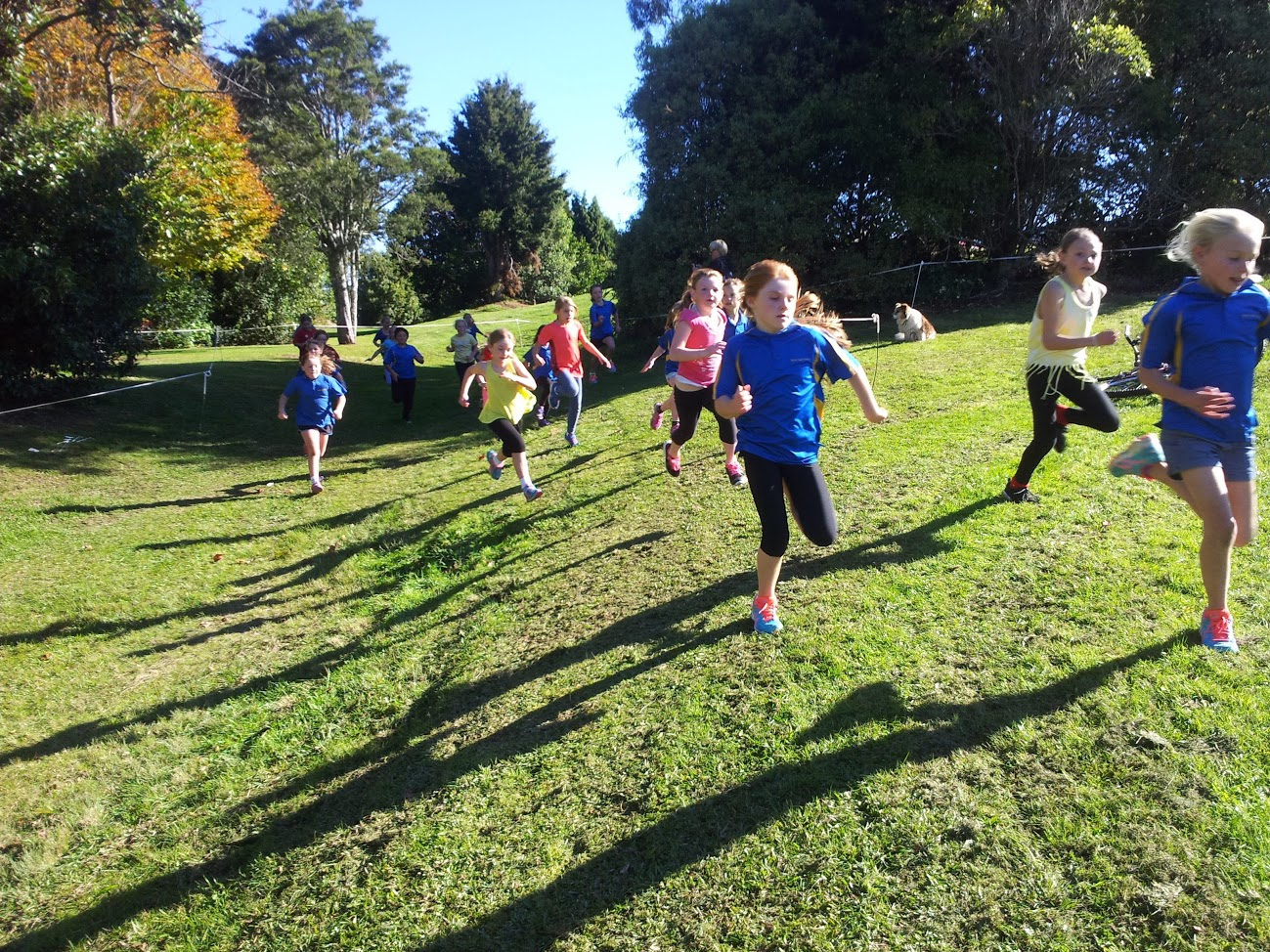 Waihi East School Cross Country (2.06.16)