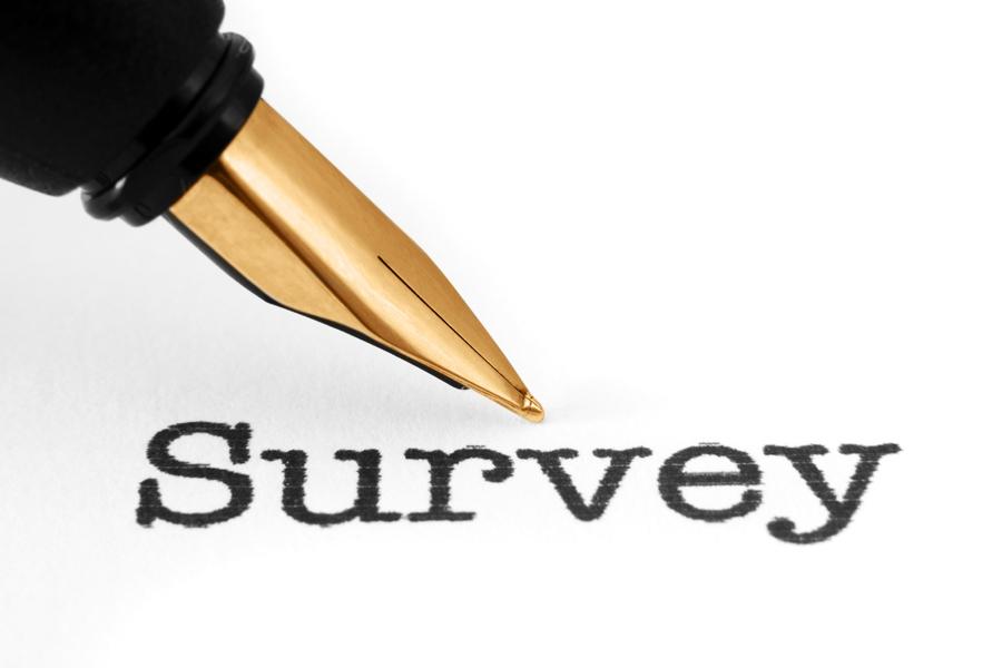 Matariki Waihi Events Survey #2