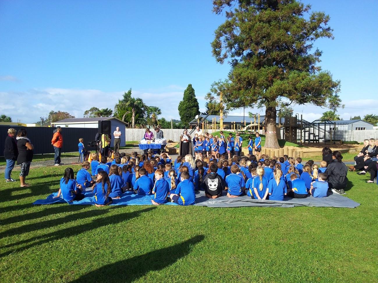 Waihi East Community Green Space/Playground