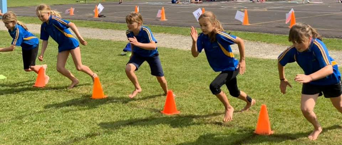 2019 Waihi cluster   Athletics results