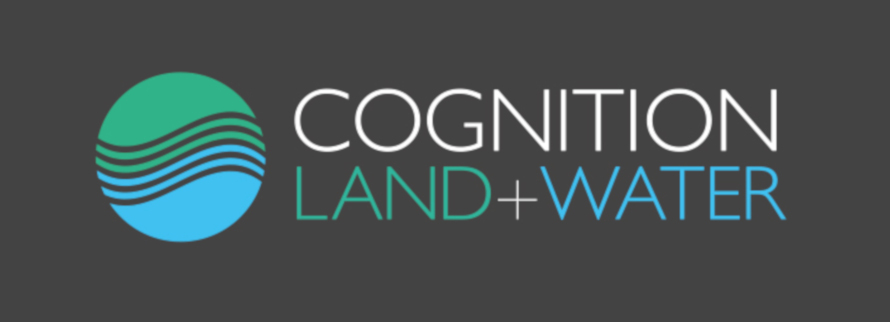 Cognition Land and Water blue, green and grey logo
