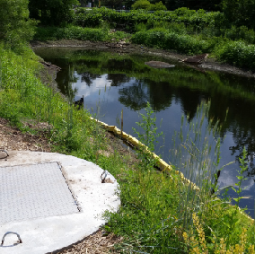 Capitol Region Watershed District - Curtiss Pond