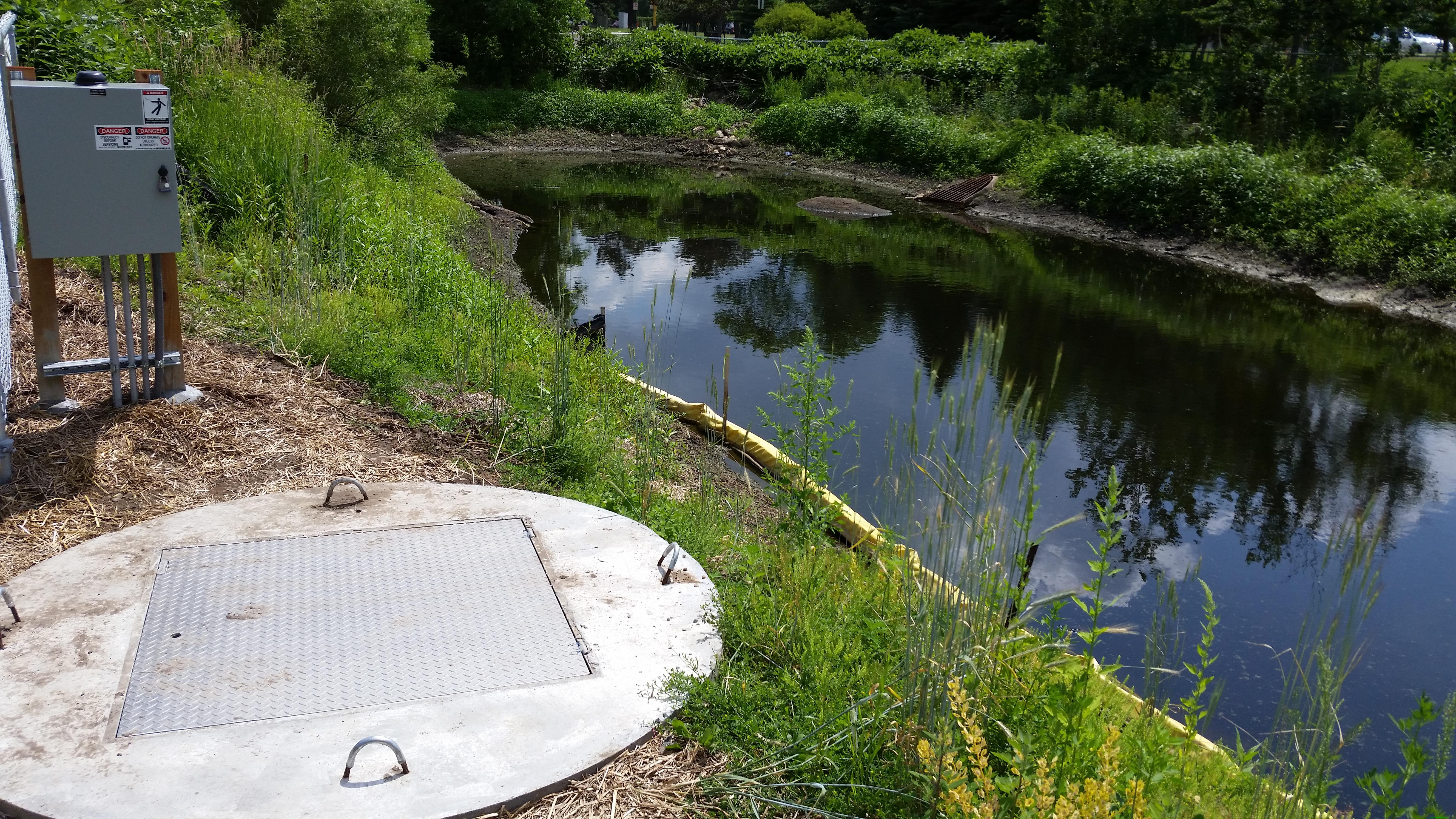 Curtiss Pond - Site Photo