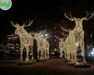 Merry Christmas to all of you! Final pic in this challenge should be a sitting duck for many of our followers... WHAT'S THE NAME OF THE CITY WHERE THESE MOOSES ARE PARADING?